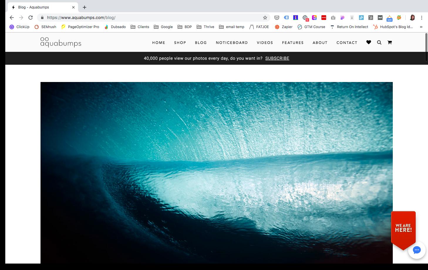 Aquabumps blog screenshot.